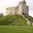 Stock Photo: Cardiff castle