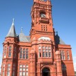 Pierhead building - cardiff bay - ストック写真