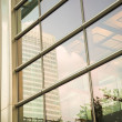 Corporate architecture detail- window - Stock Photo