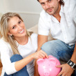 Stock Photo: Couple savings
