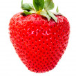 Strawberry — Foto de stock #7708827