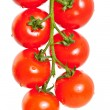 Bunch of cherry tomatoes — Stock Photo #7708843