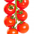 Royalty-Free Stock Photo: Bunch of cherry tomatoes