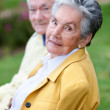 Stock Photo: Elder couple
