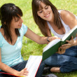 Stock Photo: Girls studying outdoors