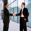 Business handshake - Foto Stock