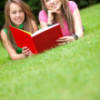 Royalty-Free Stock Photo: Girls reading a book outdoors