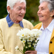 Romantic elderly couple - Stock Photo