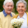 Portrait of an elder couple — Stock Photo #7731977