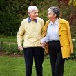 Elder couple walking — Stock Photo