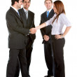 Stock Photo: Business group handshake
