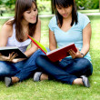 Girls studying outdoors — Stock Photo #7737972