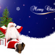 Merry Christmas background — Stock Photo #7738185