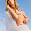 Bikini woman - Stock Photo