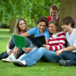 Studying outdoors — Stock Photo #7739032