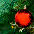 Ball on a Christmas tree — Stock Photo