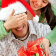Stock Photo: Surprise Christmas gift