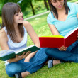 Girls studying — Stock Photo