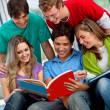 Group of students — Stock Photo #7740731