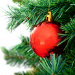 Ball in christmas tree — Stock Photo