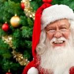 Santa portrait — Stock Photo #7741543