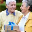 Royalty-Free Stock Photo: Couple of seniors