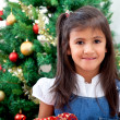 Girl in christmas — Stock Photo #7741790