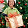 Boy with Christmas gift — Stock Photo #7742045