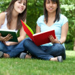 Students at the park — Stock Photo