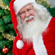 Santa next to a christmas tree — Stock Photo