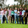 Group of students — Stock Photo #7744995