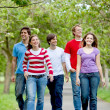 Stock Photo: Group of friends walking