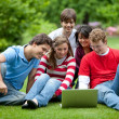 Students with a laptop — Stock Photo