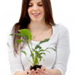 Woman with a plant — Stock Photo #7746278