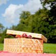 Picnic basket - Foto Stock