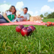 Couple having picnic — Stock Photo #7746847