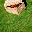 Picnic basket outdoors - Foto Stock