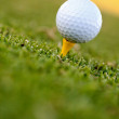 Golf ball — Stock Photo #7747106