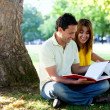 Stock Photo: Studying outdoors