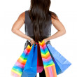 Rear view of a shopping woman - Stock Photo