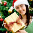 Woman with Christmas gift - Stock Photo