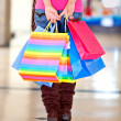 Shopping bags - Stock Photo
