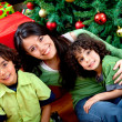 Stockfoto: Christmas portrait