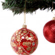 Christmas balls hanging on tree branch — Stock fotografie