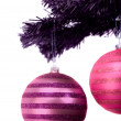 Purple and pink christmas balls — 图库照片