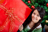 Woman with Christmas gift — Stockfoto