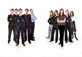 Business teams divided by men and women — Stock Photo