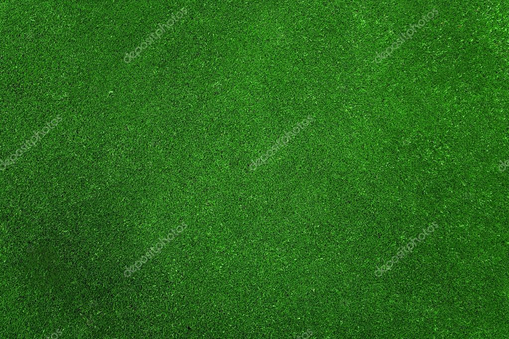 Green grass texture taken on a golf course so the grass is very nice and even  Stock Photo #7741206