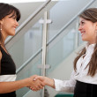 Business handshake — Stock Photo #7750441