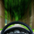 Steering wheel on forest highway — Stockfoto